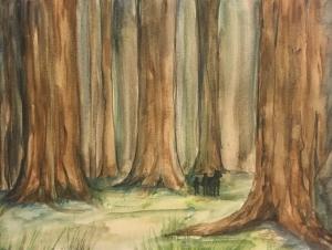 A pithwood, near Haverlin City.